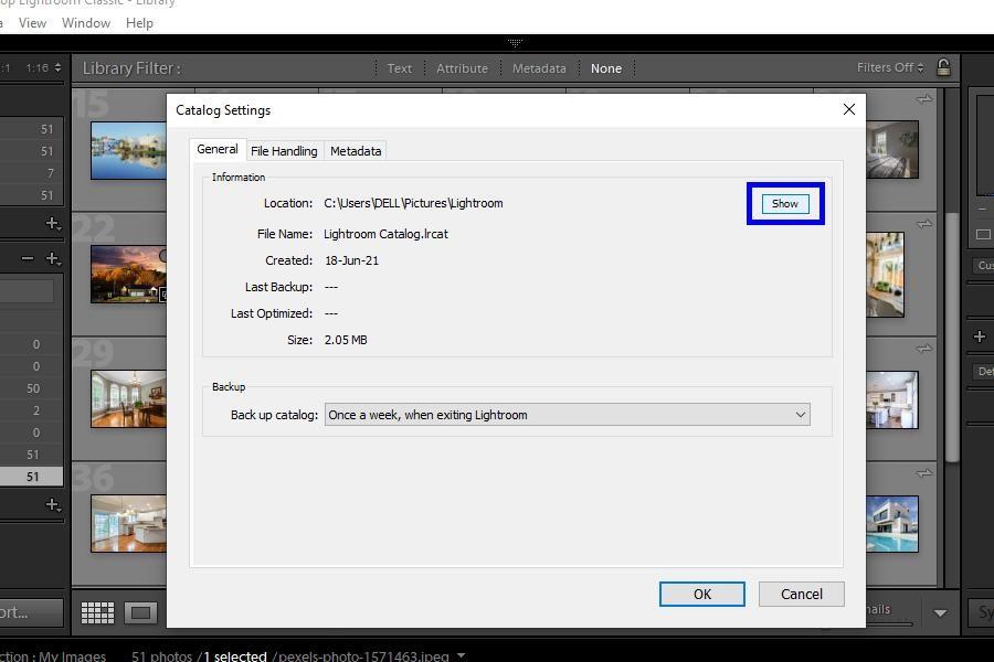 Lightroom Catalog settings dialog box