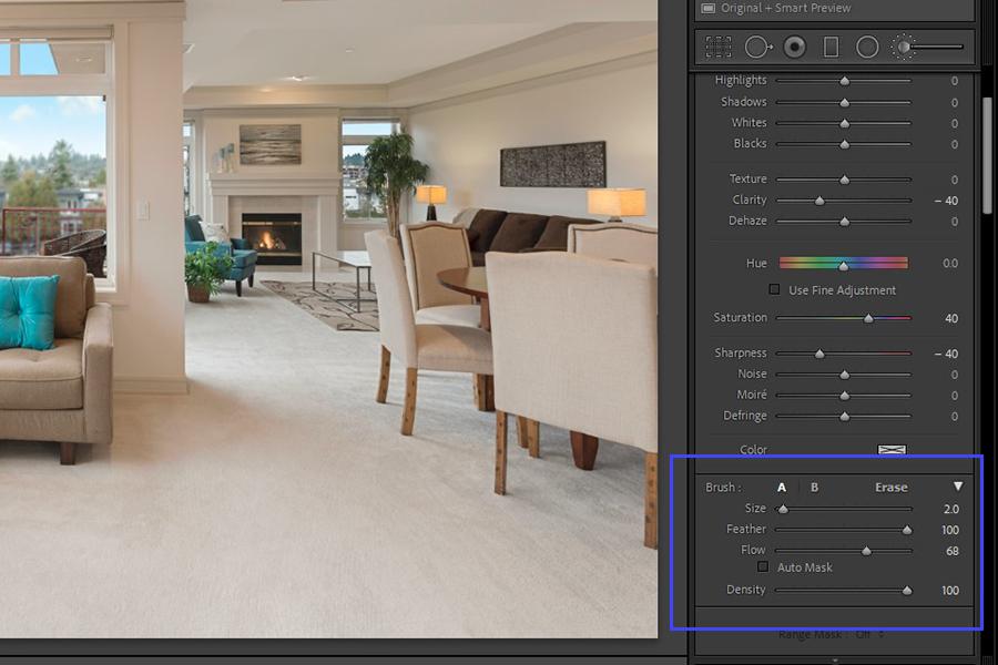 Adjustment Brush options in Lightroom for precise blurring