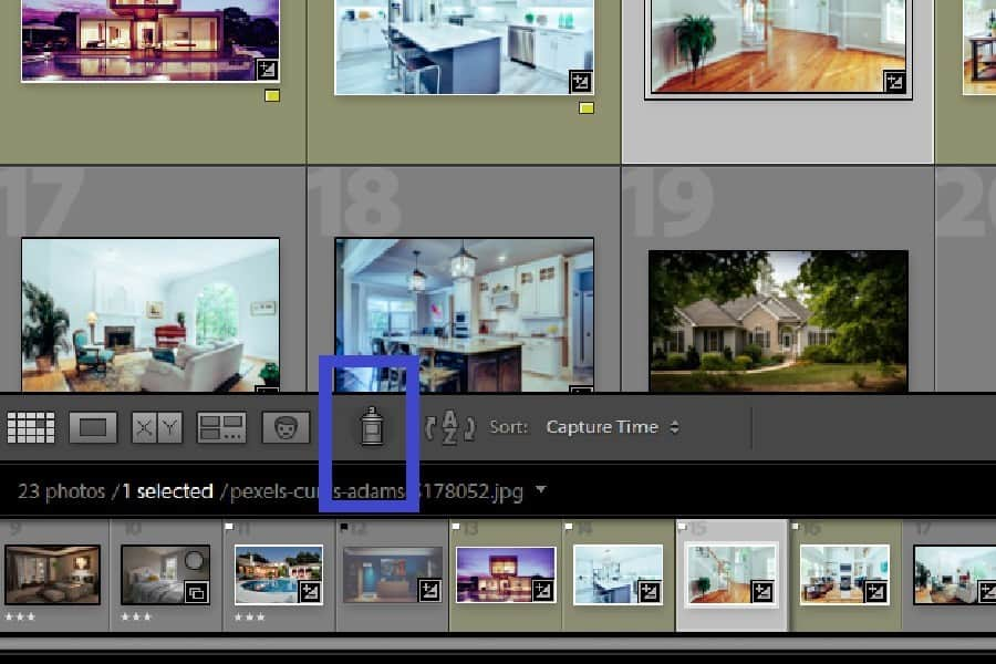 Using the Painter tool for flagging photos in Lightroom